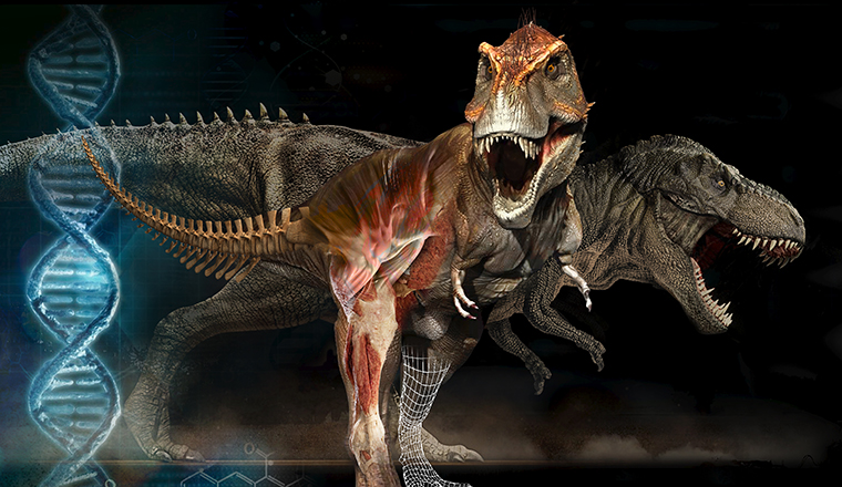 Trex featured image
