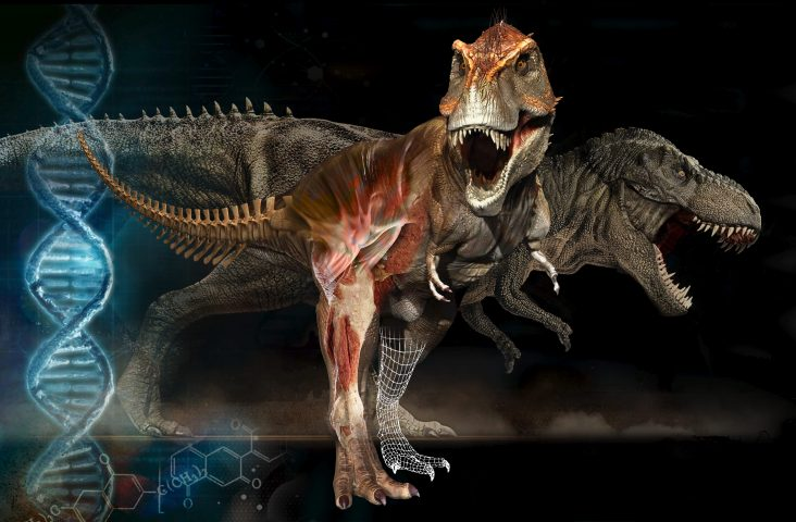 Rediscovering Trex featured image